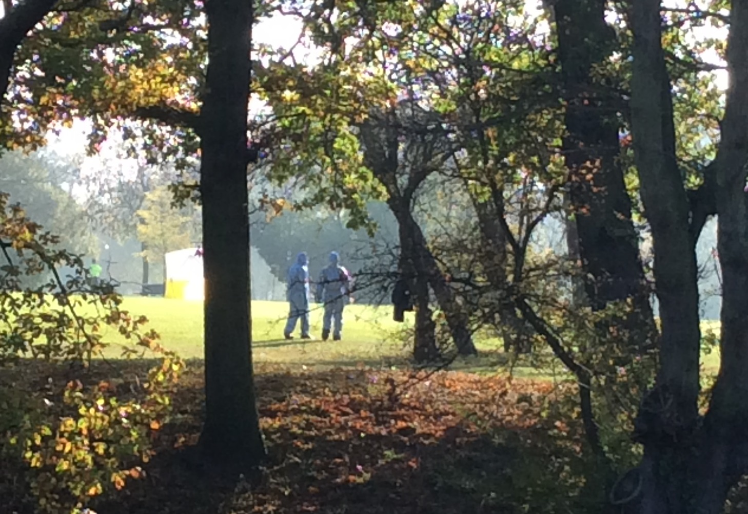 Murder probe launched after teen stabbed to death in London park